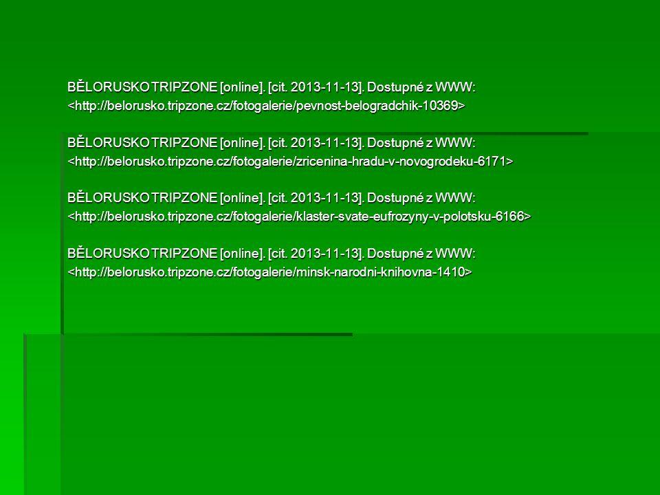 BĚLORUSKO TRIPZONE [online]. [cit. 2013-11-13]